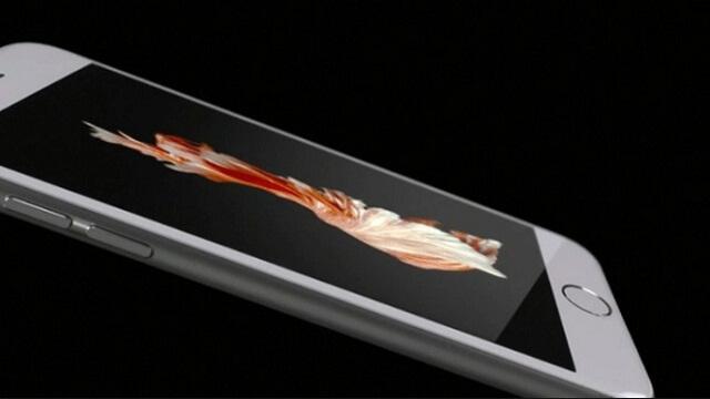 recibir sus nuevos iPhone que ya habían pre ordenado