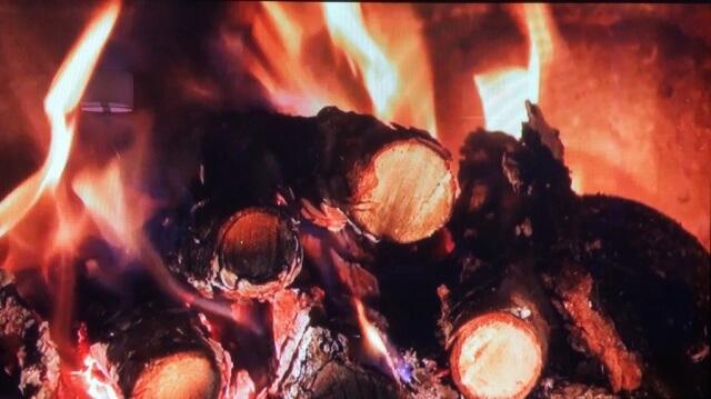 10. FirePlace