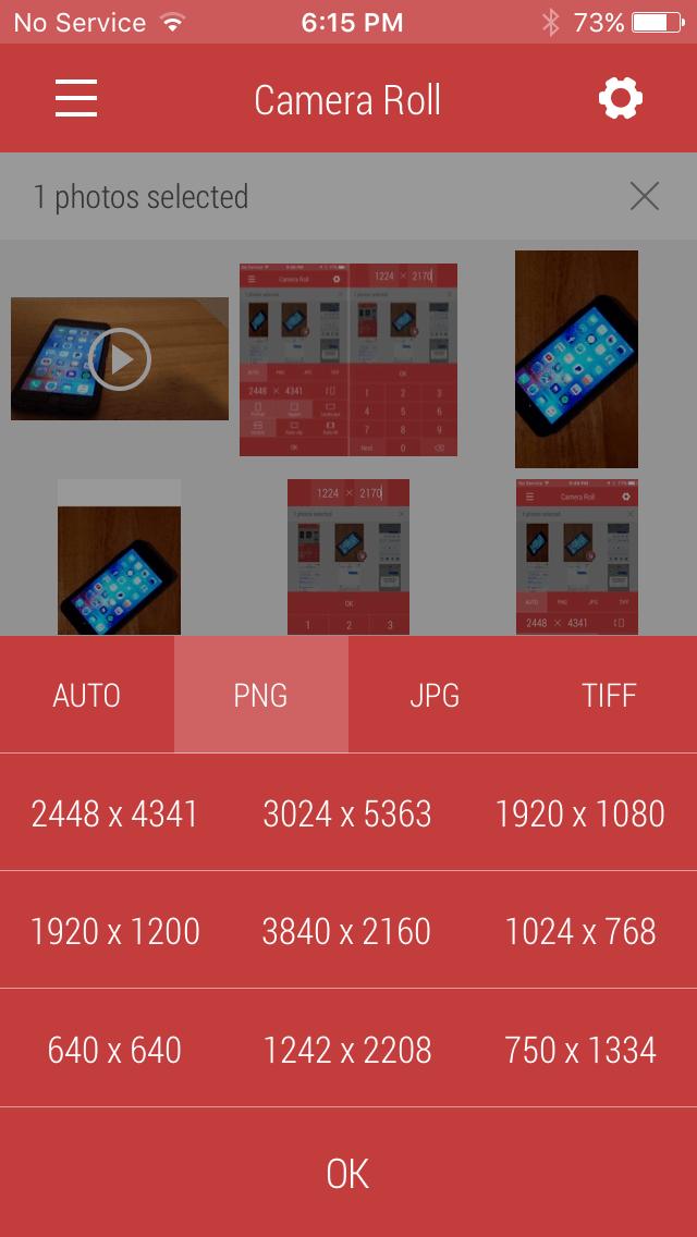 Cómo usar presets para escalar fotos en Desqueeze