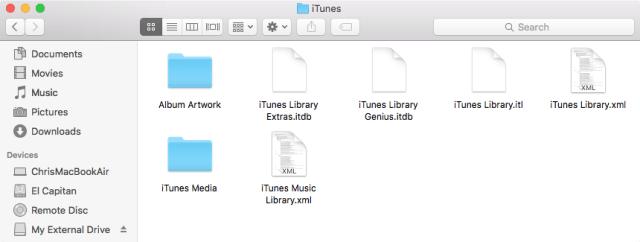 Archivos en la carpeta de iTunes