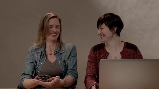 Microsoft y sus nuevos vídeos publicitarios 'PCs hacen más que las Macs'