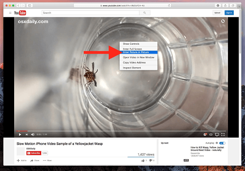 hacer-doble-clic-en-el-video